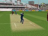 Brian Lara International Cricket 2005 screenshot 2